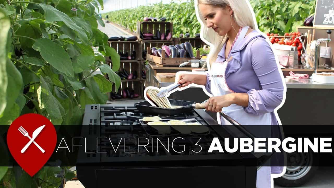 Aflevering 3 | seizoen 3 | Nederland Proeft