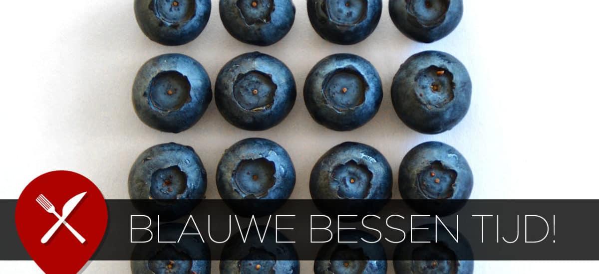 Blauwe bessen salade