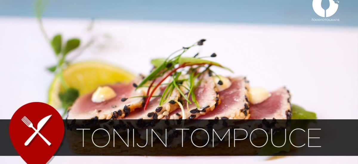 Tompouce van tonijn